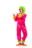 Funny playful clown Royalty Free Stock Image