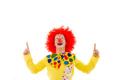 Funny playful clown. Portrait of a funny playful clown in red wig pointing and looking upwards, isolated on a white background Royalty Free Stock Photos