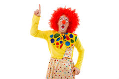 Funny playful clown. Portrait of a funny playful clown in red wig pointing and looking upwards, isolated on a white background Royalty Free Stock Photo