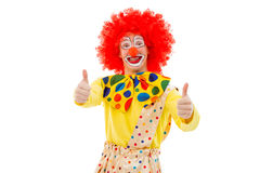 Funny playful clown. Portrait of a funny playful clown in red wig showing OK sign, looking at camera and smiling, isolated on a white background Royalty Free Stock Image