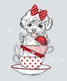 A funny poodle with vintage cups and Christmas balls. New Year`s and Christmas. Vector illustration. royalty free illustration