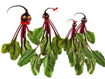 Funny portraits made of several beets. Illustration of family Royalty Free Stock Images