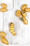 Funny potato Royalty Free Stock Photos
