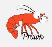Funny Prawn Fish Royalty Free Stock Photos