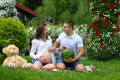 Funny pregnant woman smiling together with her husband in park with watermelon and plush bear. the concept of a new life stock photography