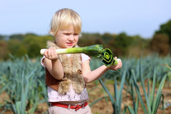 Funny preschooler girl picking leek in the field Royalty Free Stock Photos