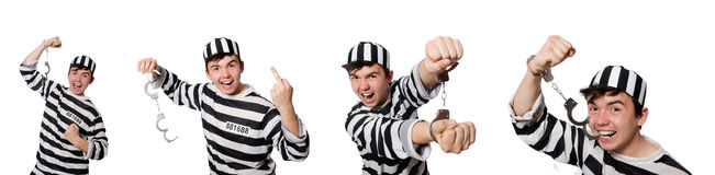 The funny prison inmate in concept Stock Photography