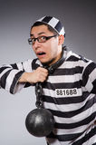Funny prisoner in chains isolated on gray Stock Images