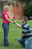 Funny Proposal Stock Images