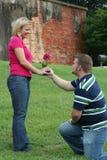 Funny Proposal. Strange Proposal Stock Images