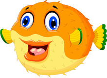 Funny puffer fish cartoon swimming Stock Image