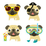 Funny pug dogs in different summer holiday situation. Royalty Free Stock Photos