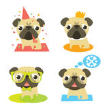 Funny pugs in different situations Royalty Free Stock Photos