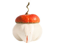 Funny pumpkin Stock Images