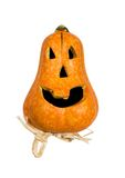 Funny pumpkin Royalty Free Stock Photo