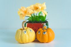 Funny Pumpkin Characters With Painted Eyes stock photos