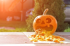 Funny pumpkin lantern Royalty Free Stock Photography