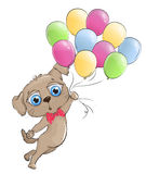 Funny puppy flying on balloons on a white background. Cute puppy flying in a balloon. Puppy with big blue eyes Stock Photo