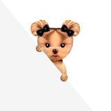 Funny puppy holding empty banner. Isolated on white. Connection and advertising concept. Realistic 3D illustration Royalty Free Stock Images