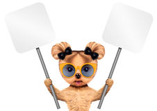 Funny puppy holding empty banner. Funny puppy with sunglasses holding empty banner, isolated on white. Connection and advertising concept. Realistic 3D Stock Photography