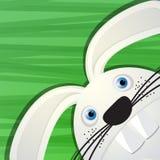 Funny rabbit avatar icon. For web Royalty Free Stock Photo