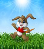 Funny rabbit cartoon holding a carrot in the grass on a background of bright sunshine Royalty Free Stock Photography