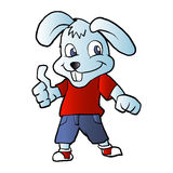 Funny rabbit cartoon Stock Images