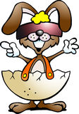 Funny rabbit with cool sunglass Royalty Free Stock Photos