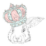 Funny rabbit in the crown. Stock Image
