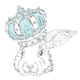 Funny rabbit in the crown. Royalty Free Stock Image