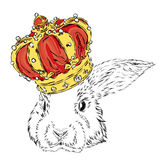 Funny rabbit in the crown. Royalty Free Stock Photography