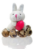 Funny rabbit with easter egg Royalty Free Stock Photography