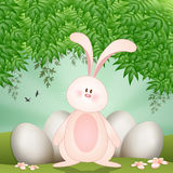 Funny rabbit with eggs for Happy Easter Royalty Free Stock Photo