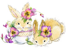 Funny rabbit and flower watercolor illustration. Cute bunny. funny rabbit and flower watercolor illustration Royalty Free Stock Images