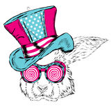 Funny rabbit in an unusual hat and sunglasses. Royalty Free Stock Image