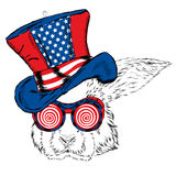 Funny rabbit in an unusual hat and sunglasses. Royalty Free Stock Images