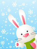 Funny rabbit. On winter background Royalty Free Stock Photography