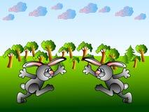Funny rabbits Stock Photos