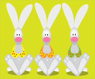 Funny rabbits with bras Royalty Free Stock Image