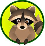 Funny raccoon cartoon Stock Photo