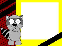Funny raccoon emotion frame background Royalty Free Stock Images