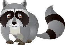 Funny racoon cartoon Royalty Free Stock Photo