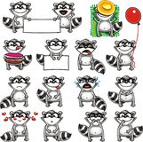 Funny racoons (2) Stock Images