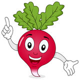 Funny Radish Character Smiling. A cute cartoon radish character smiling, isolated on white background. Eps file available royalty free illustration