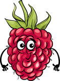 Funny raspberry fruit cartoon illustration Royalty Free Stock Photography