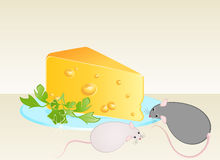 Funny rat and cheese Stock Images