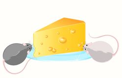 Funny rat and cheese Royalty Free Stock Photo