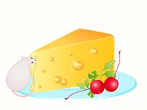Funny rat and cheese Stock Photography