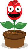 Funny red rose smiling Stock Image