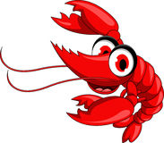 Funny red shrimp cartoon Stock Image